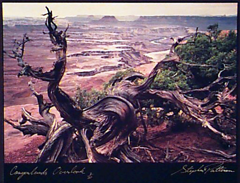 Canyonlands Overlook   Radiant Earth Vol 1  3/20