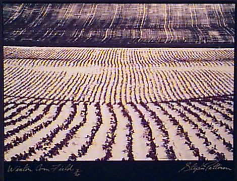 Winter Cornfield   Radiant Earth Vol 1  3/20