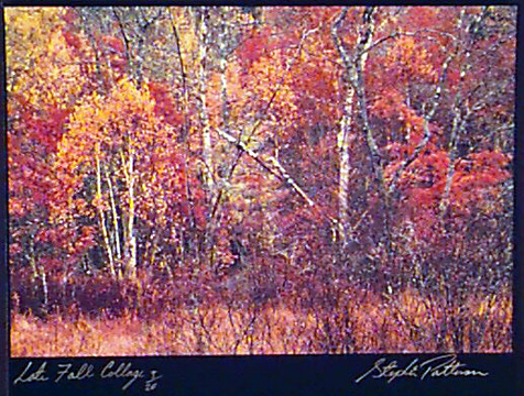 Late Fall Collage  Radiant Earth  Vol 1 3/20 Framed, included