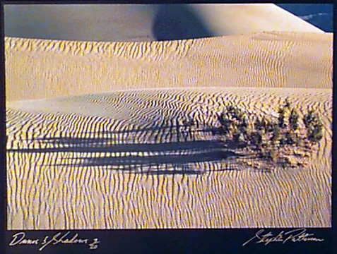 Dunes & Shadows  Radiant Earth Vol 11  3/20