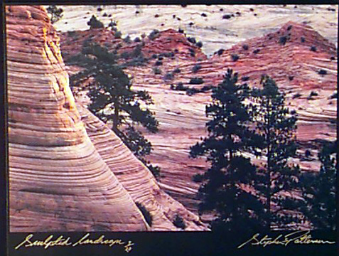 Sculpted Landscape  Radiant Earth Vol 11 3/20 Framed, included